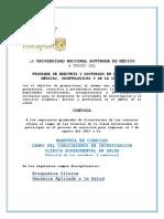 Convocatoria Maestria ICES_2017