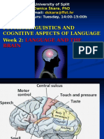 Language.brain.2