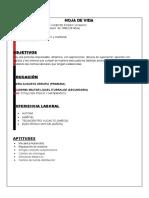Curriculum-Vitae Alvaro Posso