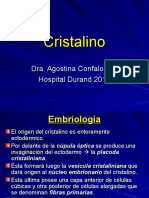 Cristalino+UDH (1)