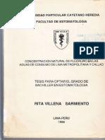 Tesis Dra. Rita Villena