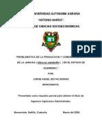 Moyao-Moras, J. 2012. Problemática de La Producción y Comercialización de La Jamaica (Hisbiscus Sabdariffa L.) en El Estado de Guerrero.