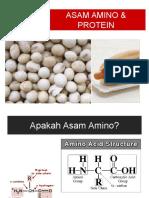 Asam Amino & Protein