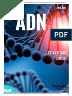 Revista Adn