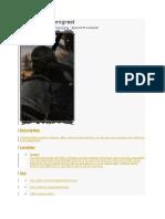 Dark Souls 2 NPC.docx