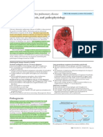 ABC of Chronic Obstructive Pulmonary Disease Pathology, Pathogenesis, And Pathophysiology