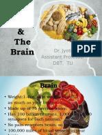 Brain Ppts