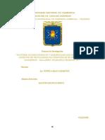 Proyecto  de investigación factores socioeconómicos y ambientales en sistemas  silvopastories  celendin