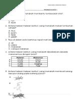 Ujian Diagnostik Sn t3