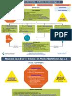 Neonatal Jaundice Pathway.pdf