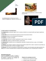 Metalurgia y Mineralurgia