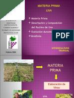 Clase Materia Prima Uva1[1