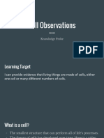 cell observations