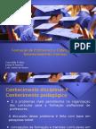 Didática e Formação de Professores