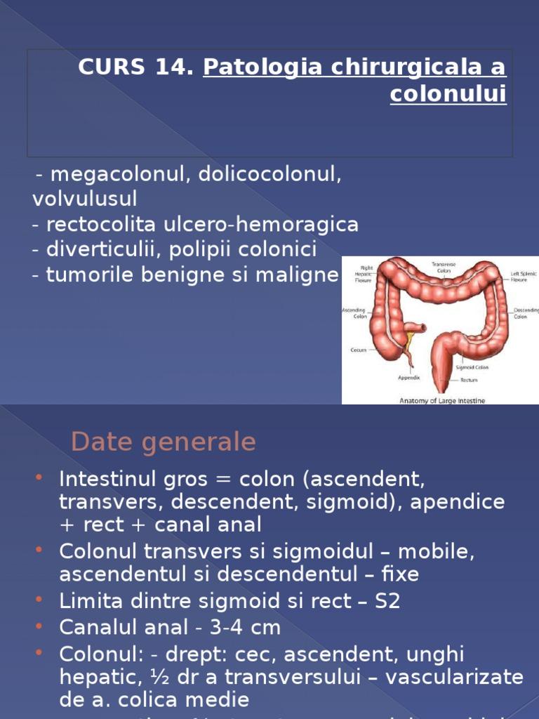 unghiul hepatic al colonului)