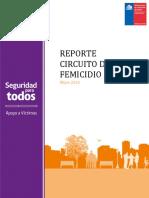 Reporte Circuito Femicidio 2015