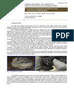 Toxicidad de las secreciones de las gladulas parotidas en sapos.pdf