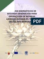 antonio-robledo-miras-biomasa2.pdf