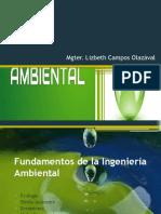 Fundamentos de la Ingeniería Ambiental