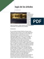 Mitología de Los Árboles - Nueva Acrópolis España