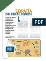 1_Detoxificación y Drenaje Con Homeopatia Unitaria