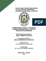 EXPERIENCIA EN CLINICA.doc