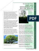 Land Management Willow Tree Factsheet