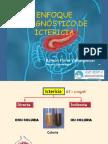 Enfoque Dx de ICTERICIA.pdf