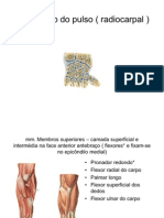 3-artic pulso