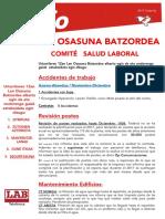 Lan Osasuna - Urtarrila 2017