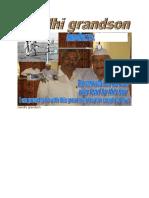 Gandhi Grandson