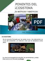 Componentes Del Escosistema