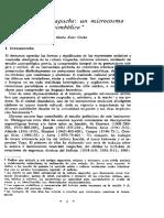 El Kultrún Mapuche, Un Microcosmo Simbólico