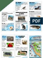 Triptico Animales Nativos y Exóticos Del Perú
