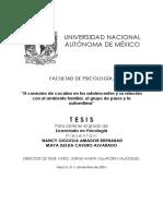 El consumo de cocaína y la relacion familiar, relacion de pares y autoestima.pdf
