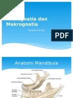 Mikrognatia Dan Makrognatia