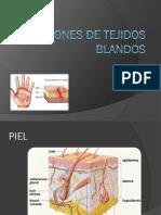 Lesiones de Tejidos Blandos