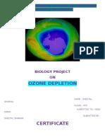 Ozone Depletion Biology Project