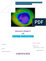 Ozone Depletion Biology Project