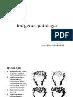 imágenes patología