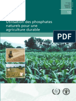 Phosphate Pour Agricol