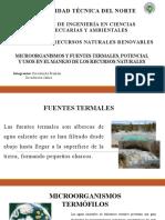 MICROORGANISMOS-Y-FUENTES-TERMALES-POTENCIAL-Y-USOS.pptx