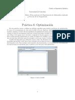 P6_optimizacion