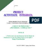 Proiect Activitate Integrata Gr. i
