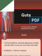 Guta_2012.pdf