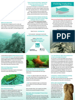 Fipad Leaflet - frequently asked questions