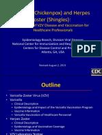 VZV_clinical_slideset_Jul2010.pdf