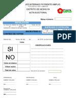 Elecciones Internas p 2