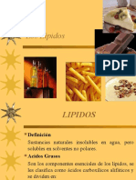LosLípidos