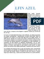 EL DELFIN AZUL.pdf